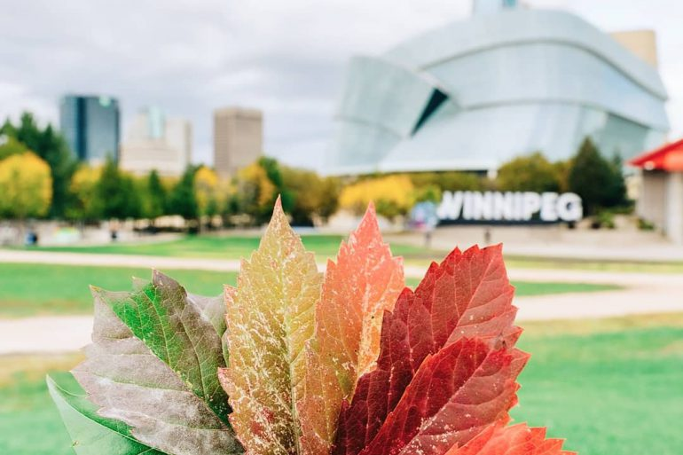 Fall in Downtown Winnipeg, Fall at the Forks, The Forks, Canadian Museum for Human Rights, Winnipeg Skyline, Downtown Living, Living in Downtown Winnipeg, Living at 300 Main Downtown Winnipeg Apartments